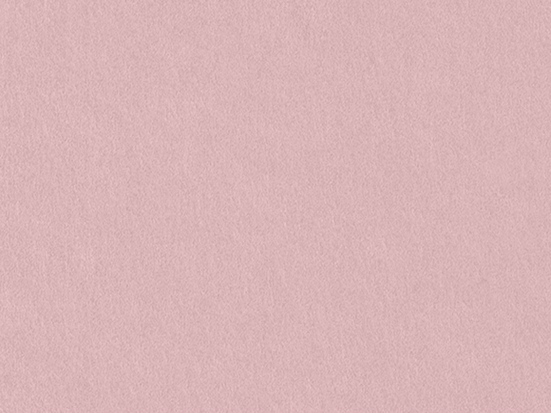 Colorplan Label Candy Pink